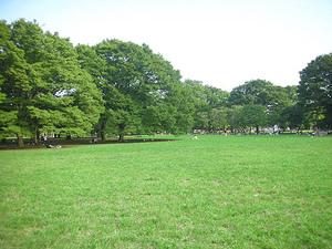 代々木公園 (12).jpg